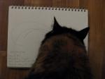 alice investigates the sketch