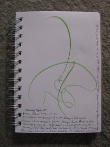 dance #214, glistening grasses and hummingbird moths